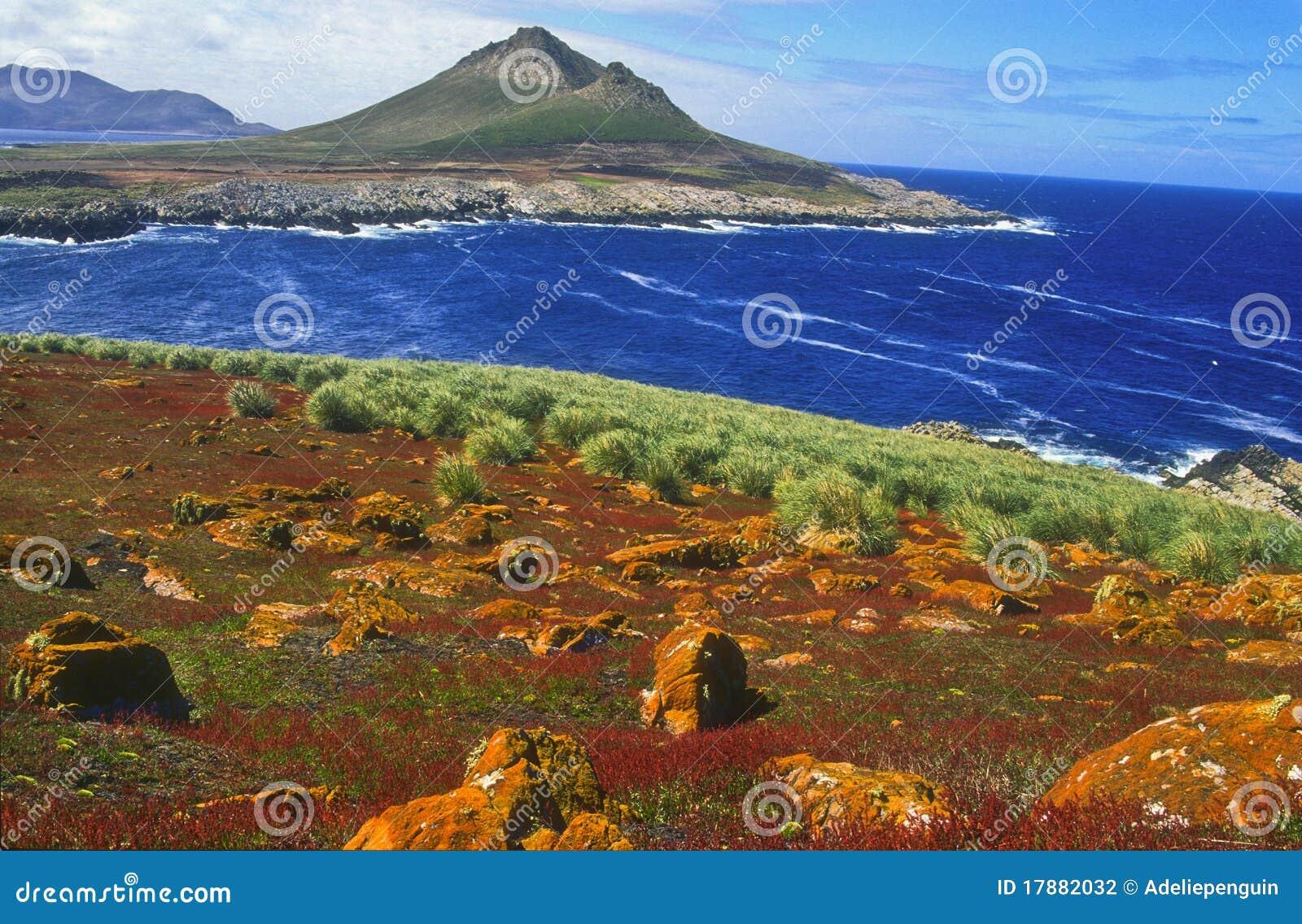 Ilhas Falkland