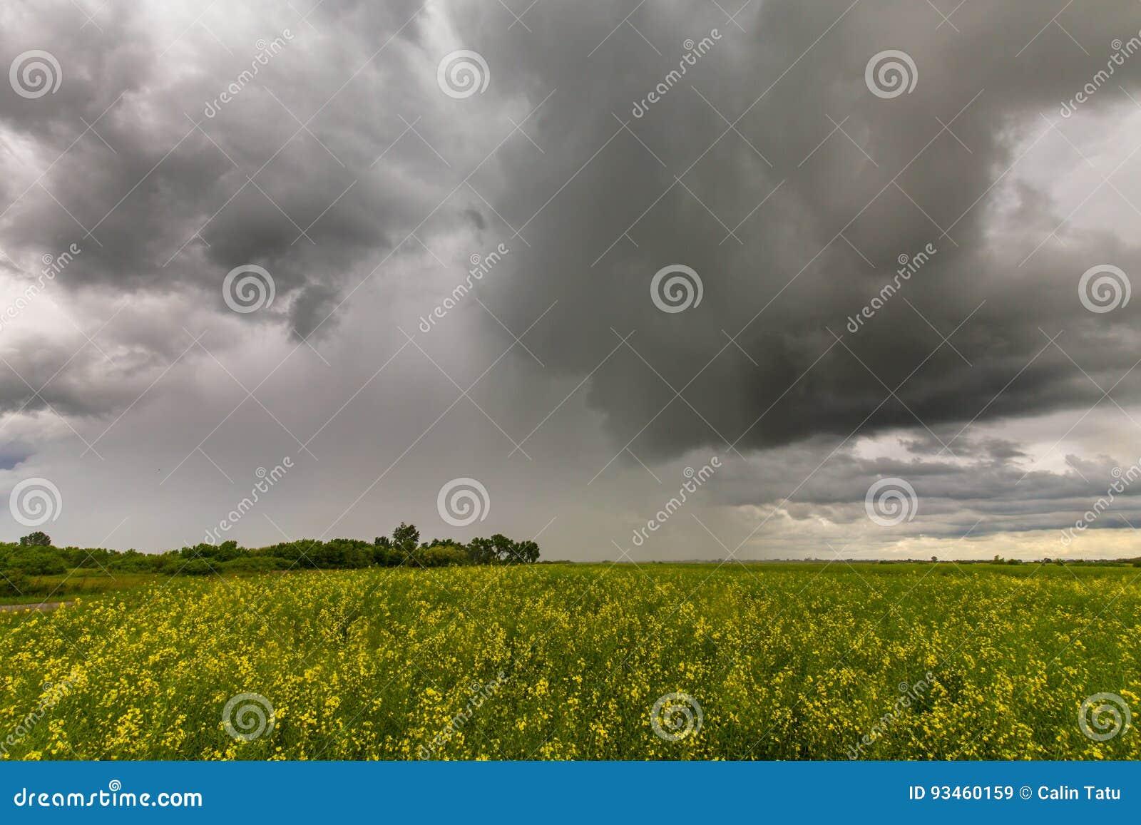 Illavarslande stormmoln och canolafält