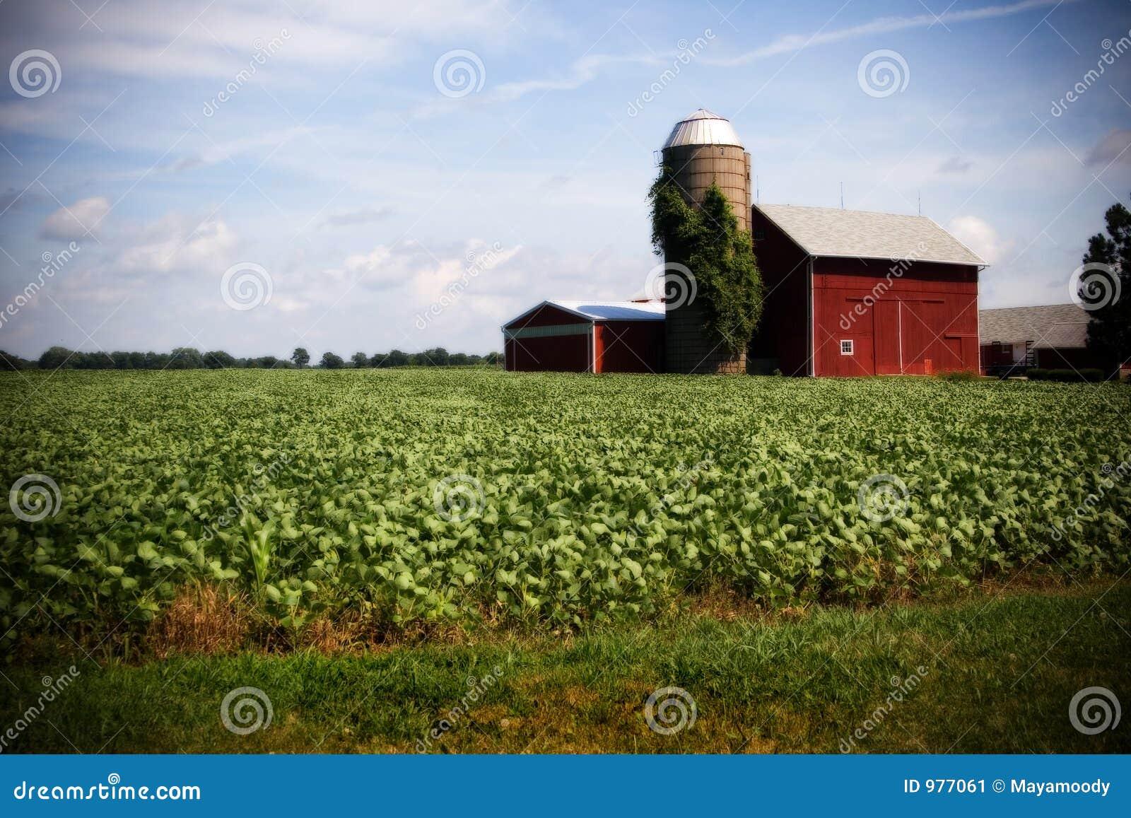 Illinois Farm Stock Image Image 977061