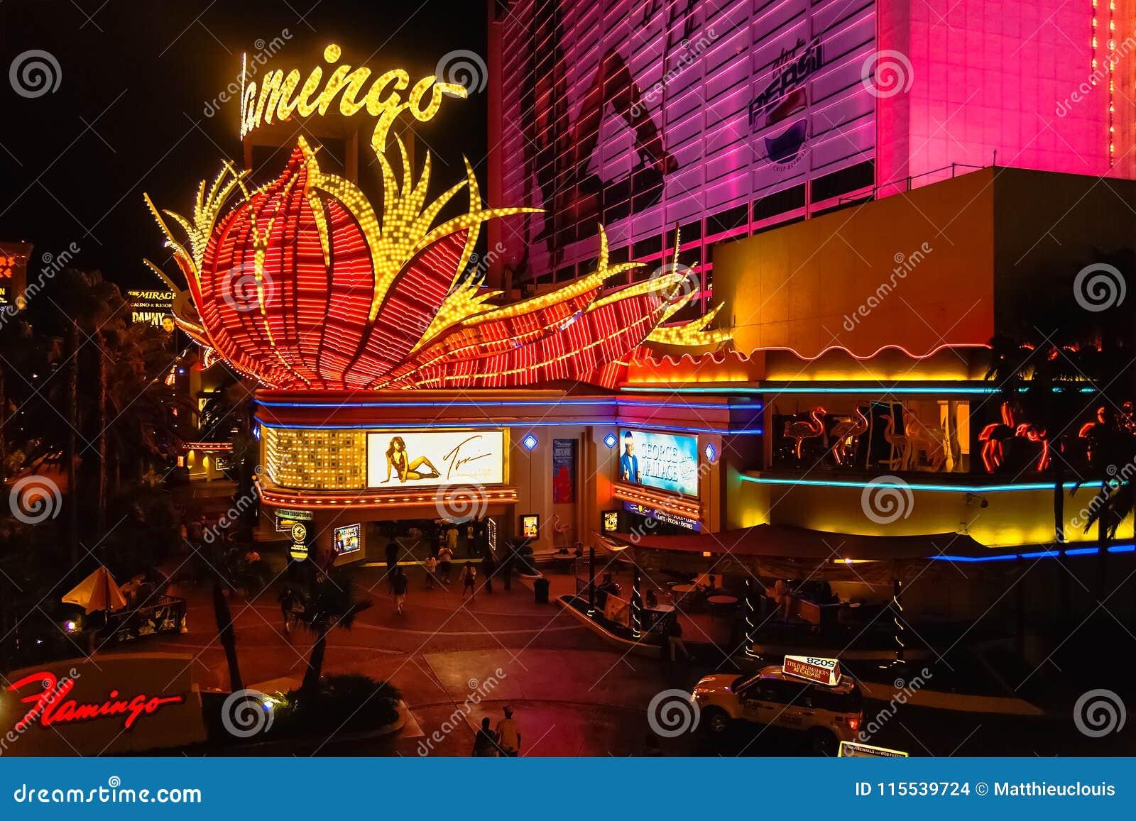 The Flamingo casino by night