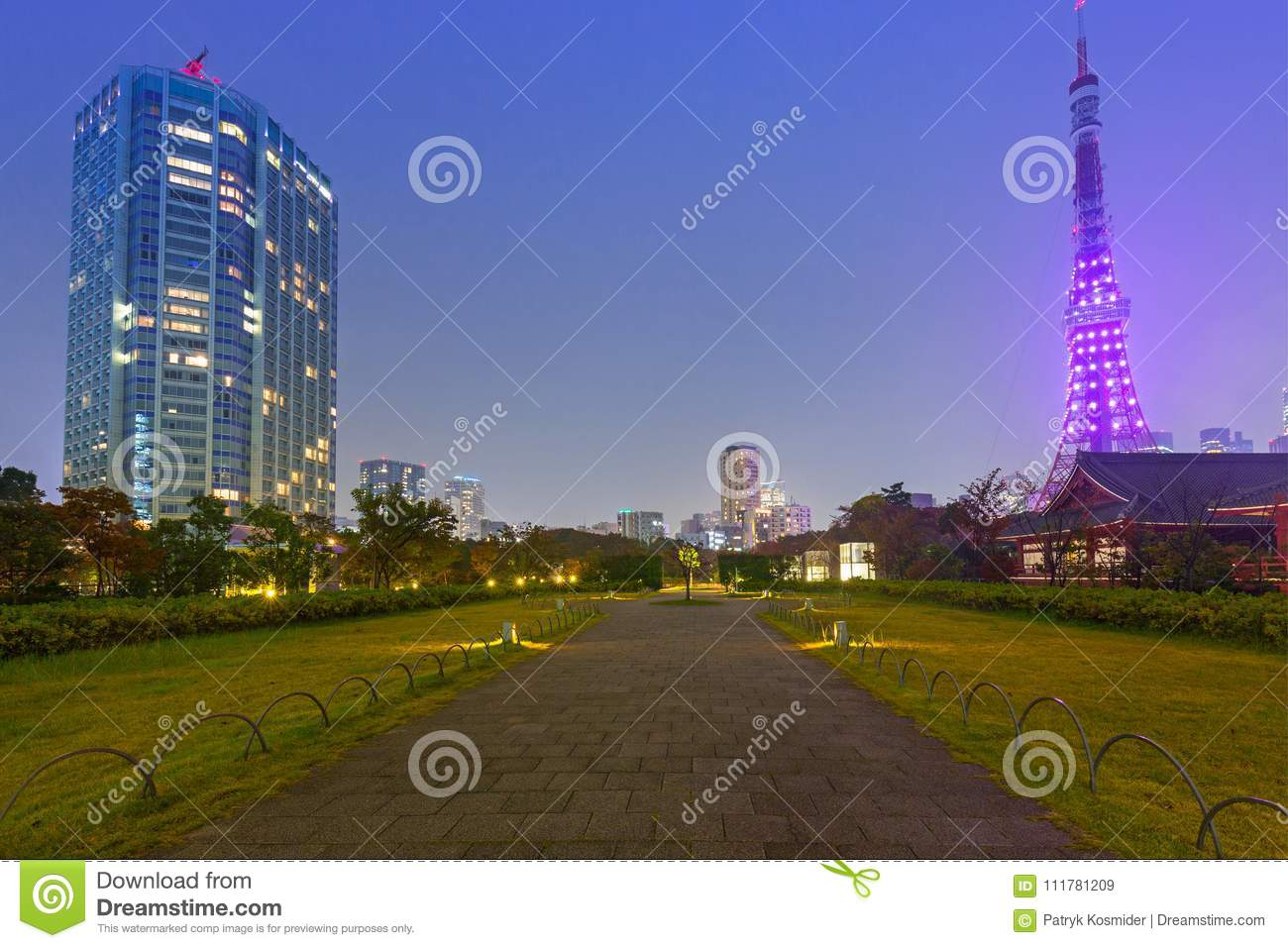 Illuminated Tokyo tower in the park at night