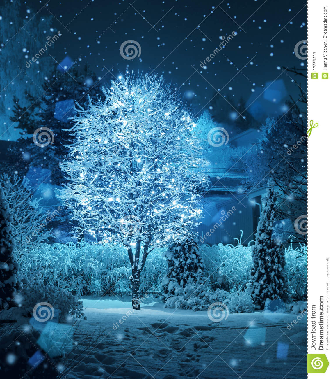 royalty free stock photo - Snowfall Christmas Lights