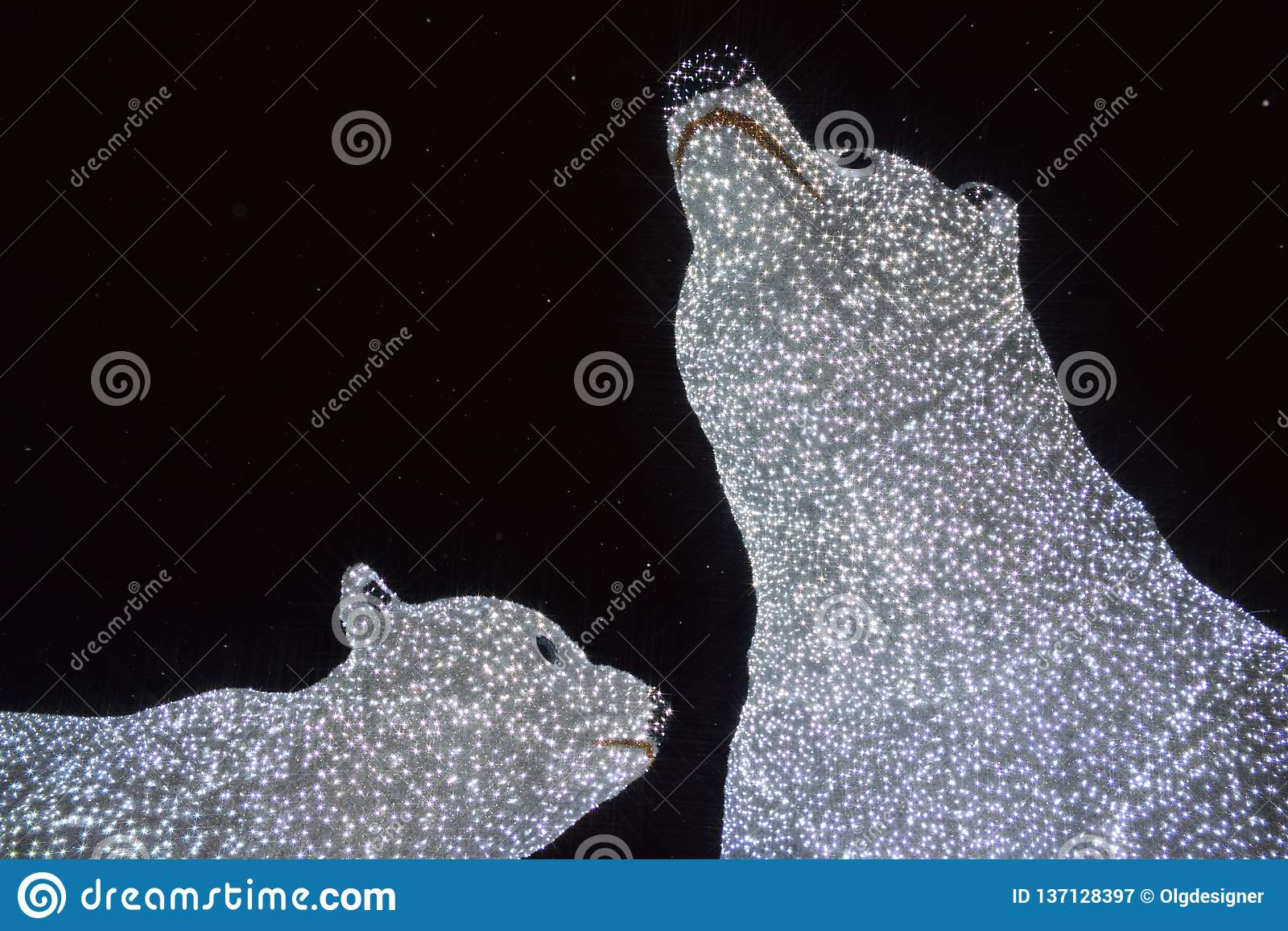 Illumination d ours blancs