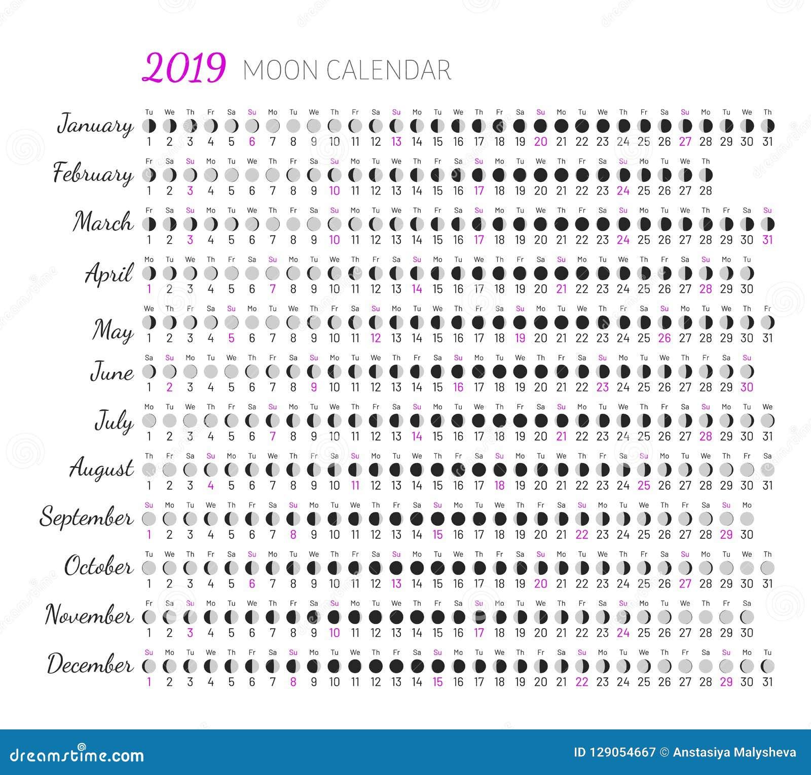 Calendrier Nouvelle Lune 2019.Illumination De Lune Et Age De Lune Illustration De Vecteur