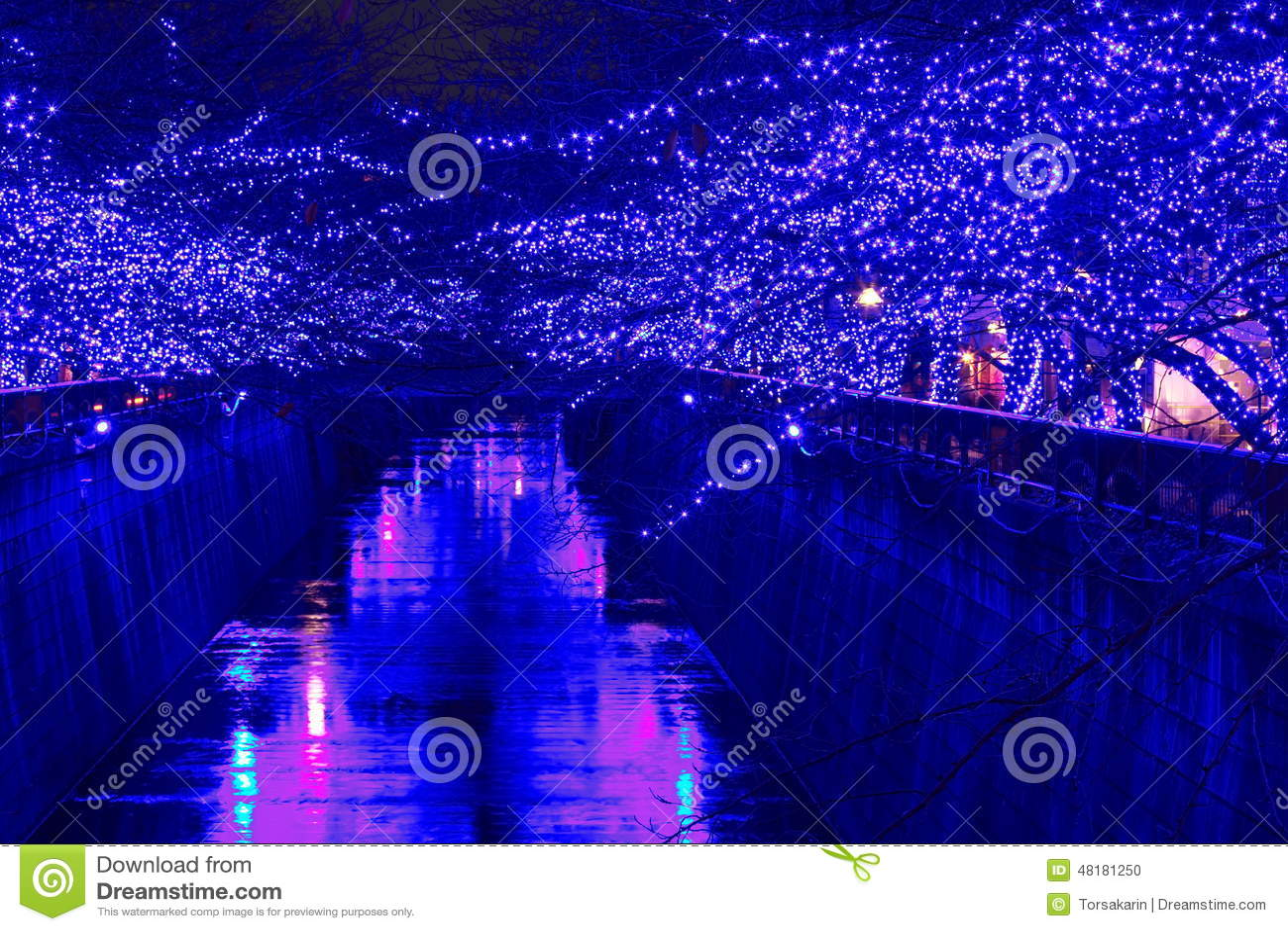 Illumination de Noël de Tokyo