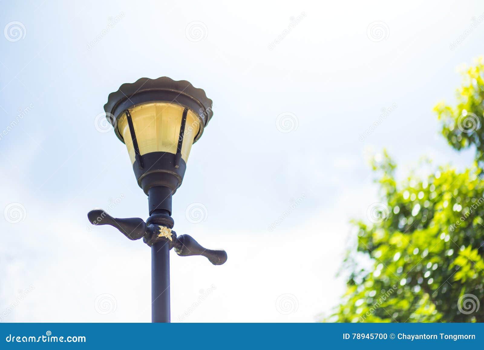 Lanterna Illuminazione : Illuminazione della lanterna nel parco fotografia stock immagine