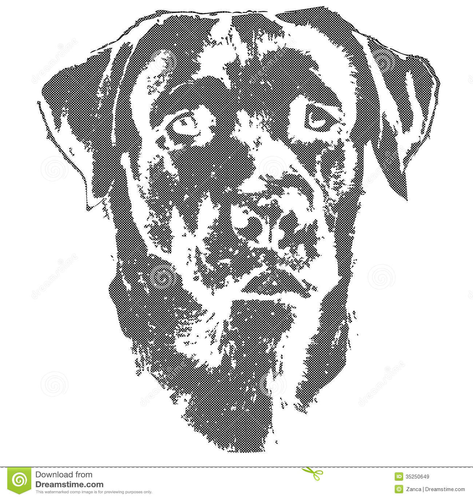Illustratie van hond, labrador retriever