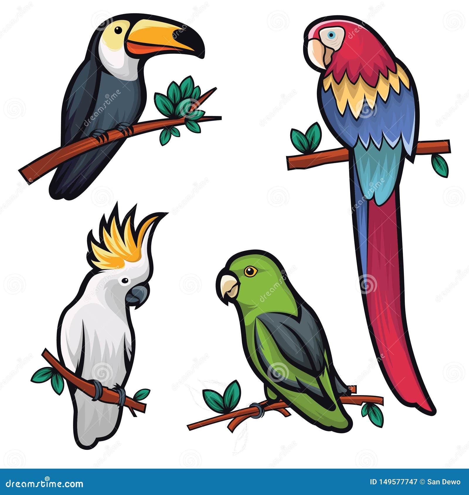 Illustratie van vier koele vogels