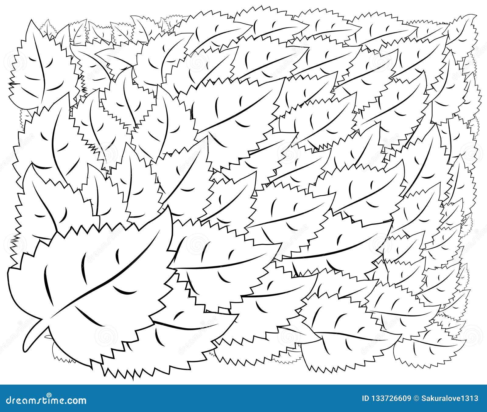 Illustratie zentangl Bloemkader voor foto Kleurend boek Antistress voor volwassenen en kinderen Rebecca 36