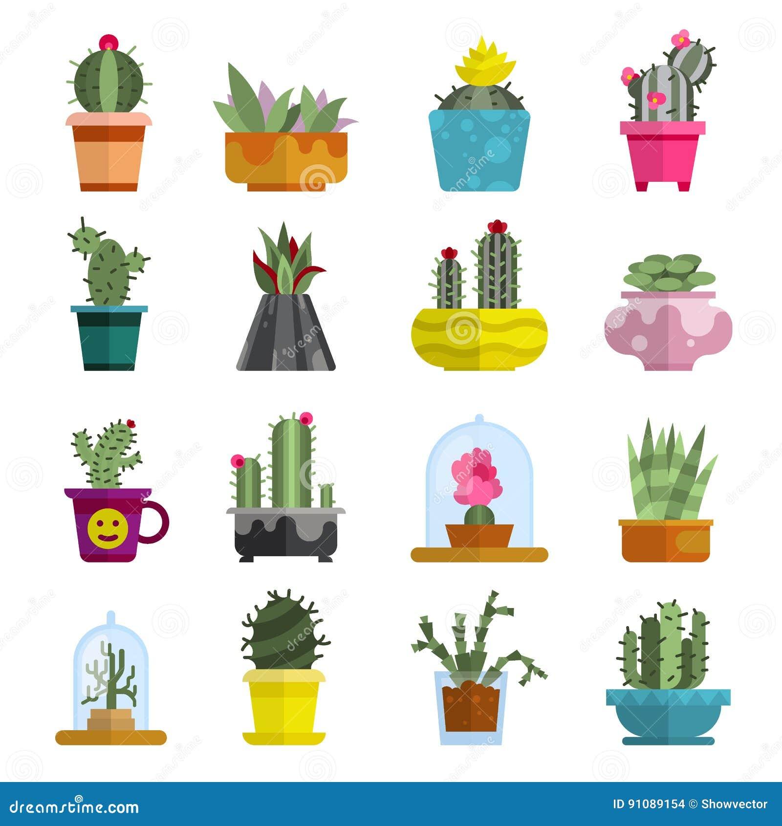 Illustration à La Maison Succulente De Vecteur De Plante