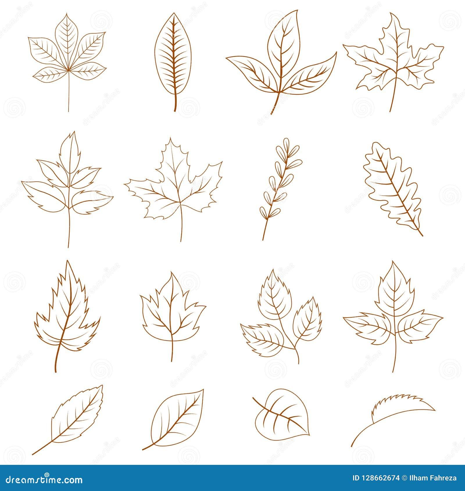 Autumn Leaves Doodles Set Stock Vector Illustration Of Leaf 128662674
