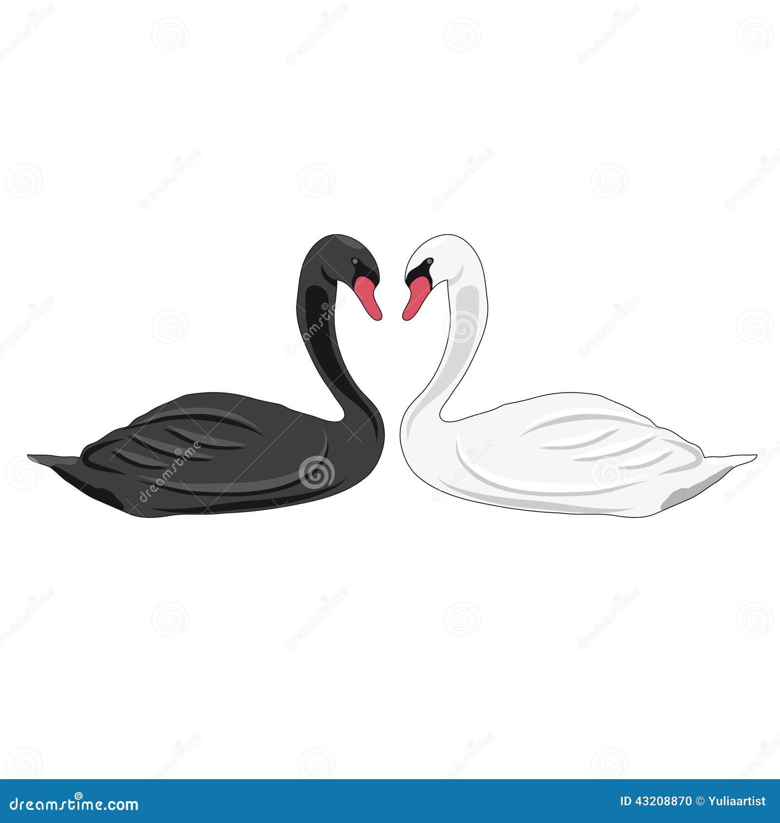 Download Illustration av svanar vektor illustrationer. Illustration av diagram - 43208870