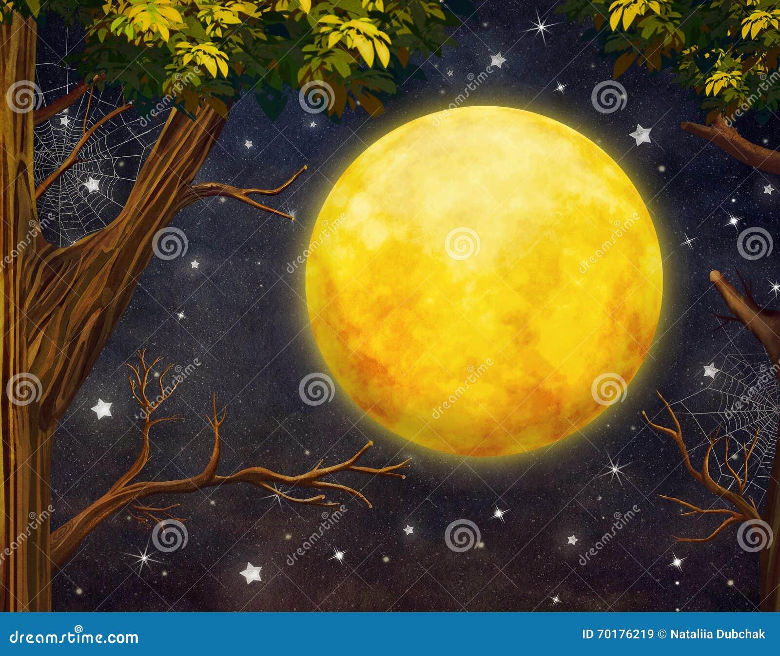 Illustration av träd och fullmånen med stjärnor på natthimmel