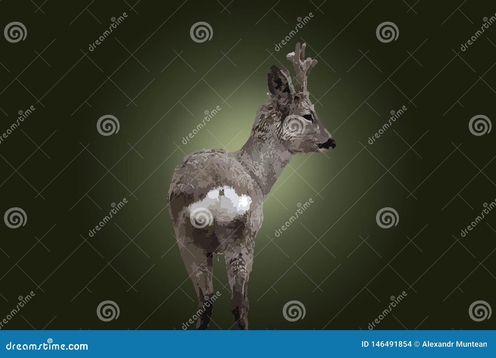 Illustration av unga hjortar
