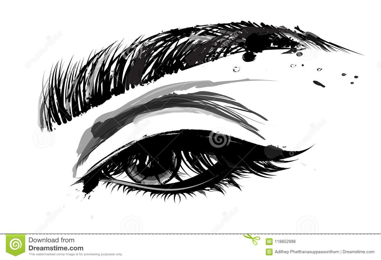 Illustration Of Eye Makeup And Brow On White Background Stock Vector