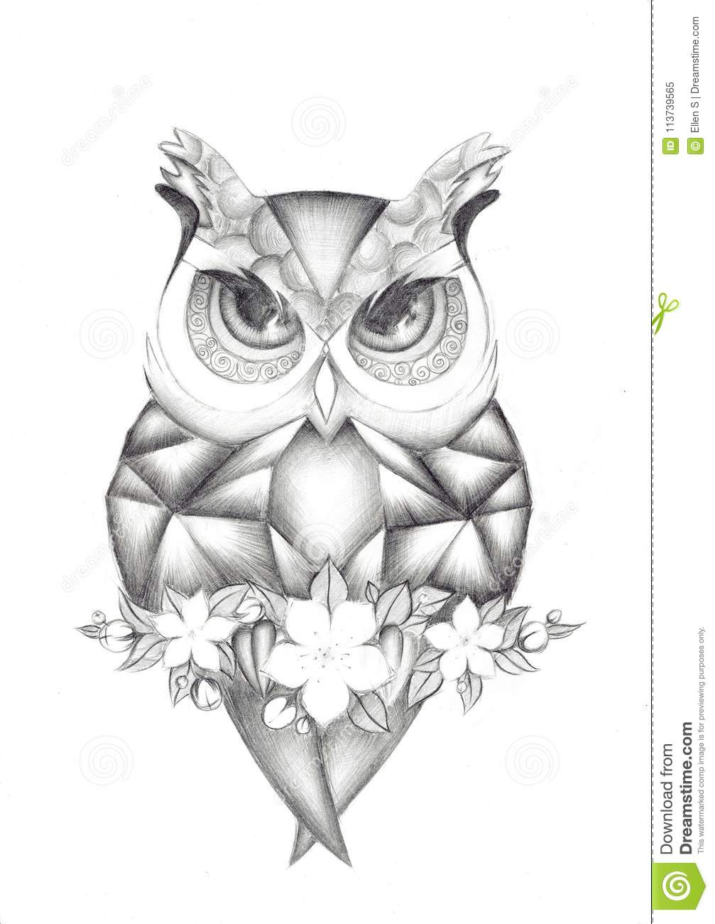 illustration of a bird owl drawing pencil stock illustration Owl Pencil Drawings of White illustration of a bird owl drawing pencil