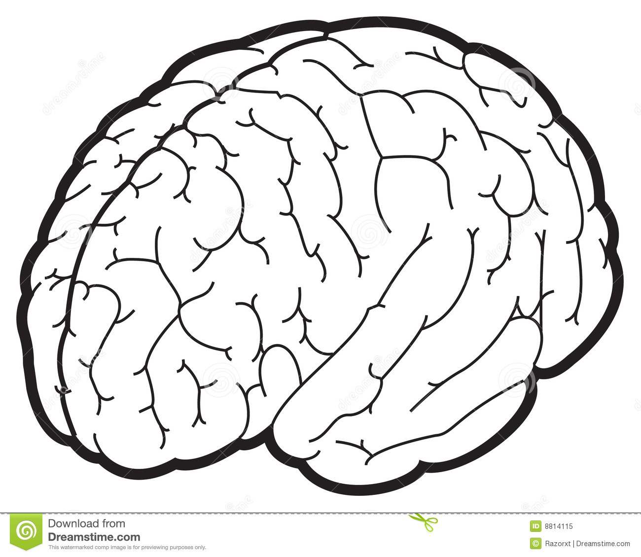 illustration of a brain royalty free stock photo