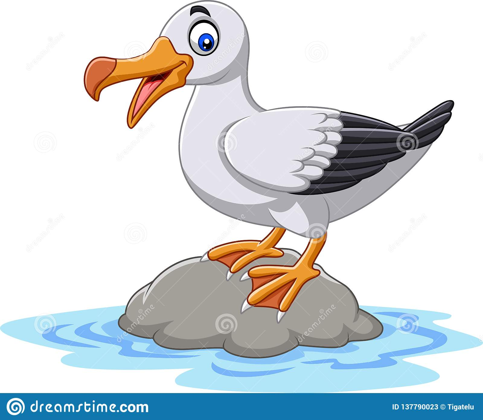 albatross cartoons illustrations amp vector stock images