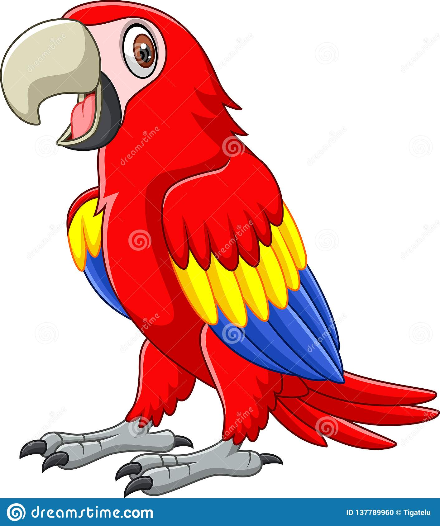 Cartoon funny macaw