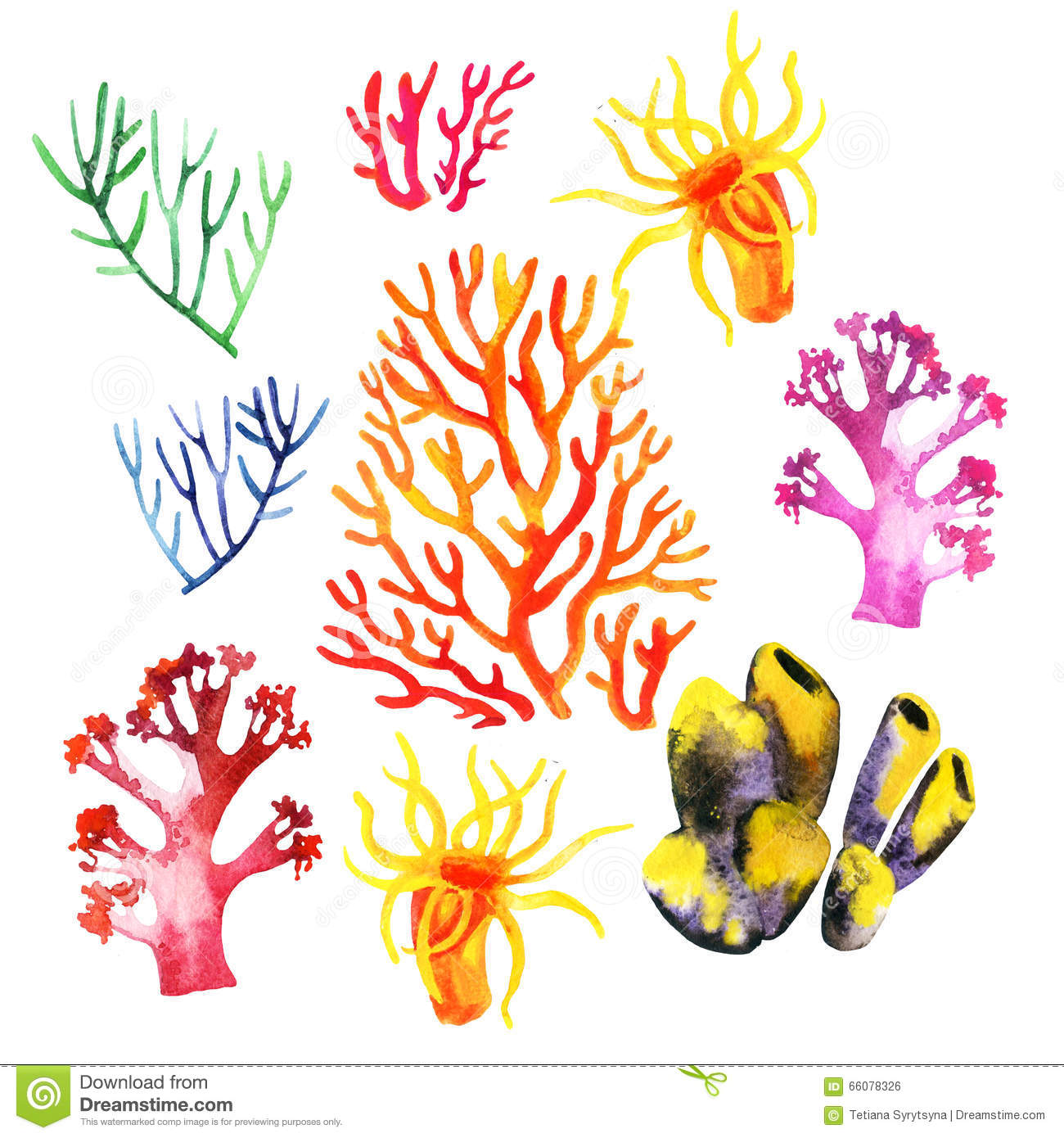 illustration of the colorful coral reefs stock illustration