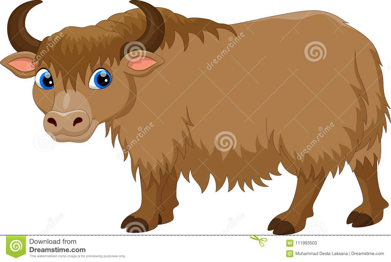 Yak Cartoons Illustrations Amp Vector Stock Images 1201