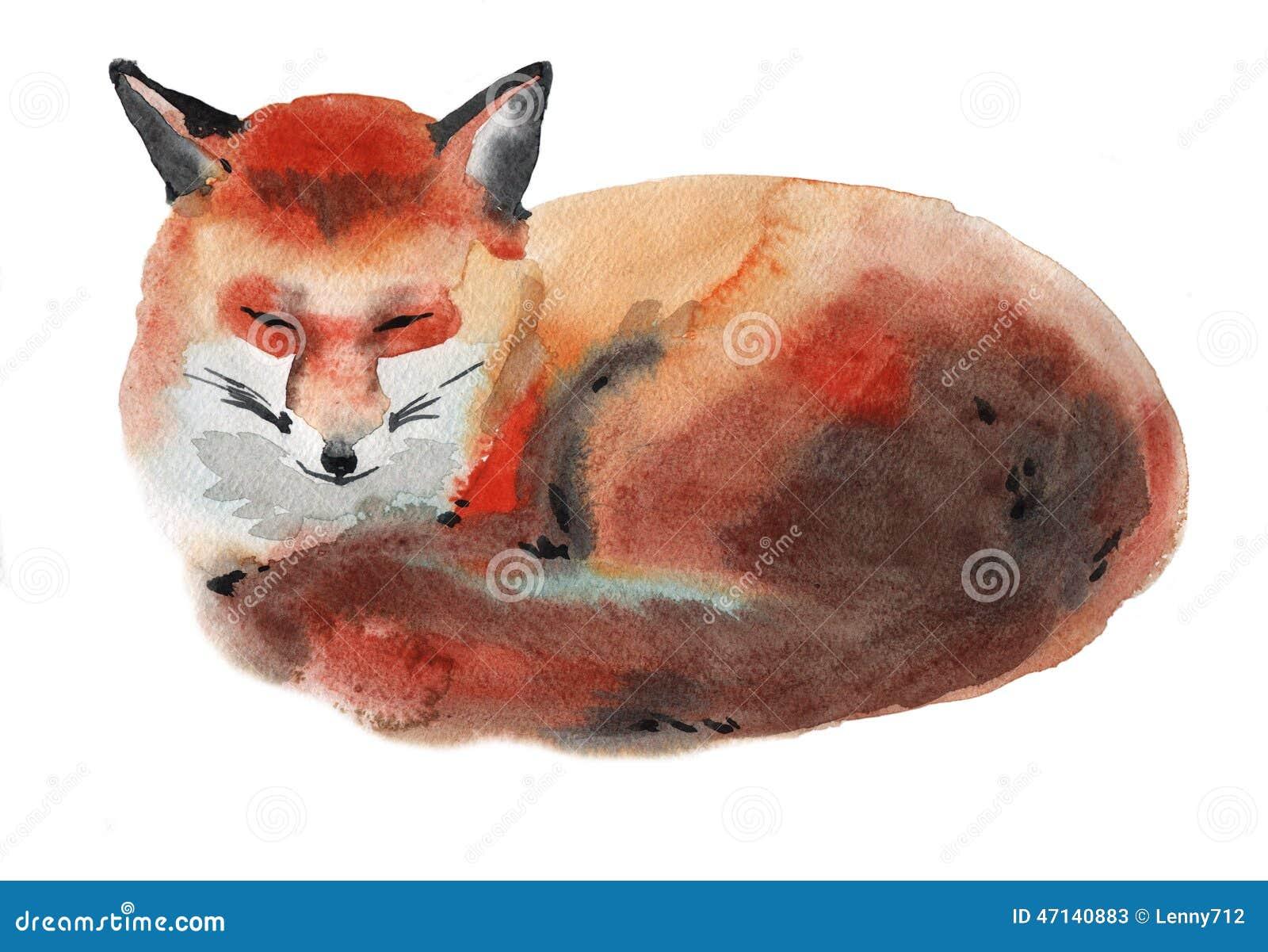 Illustration d aquarelle d un renard