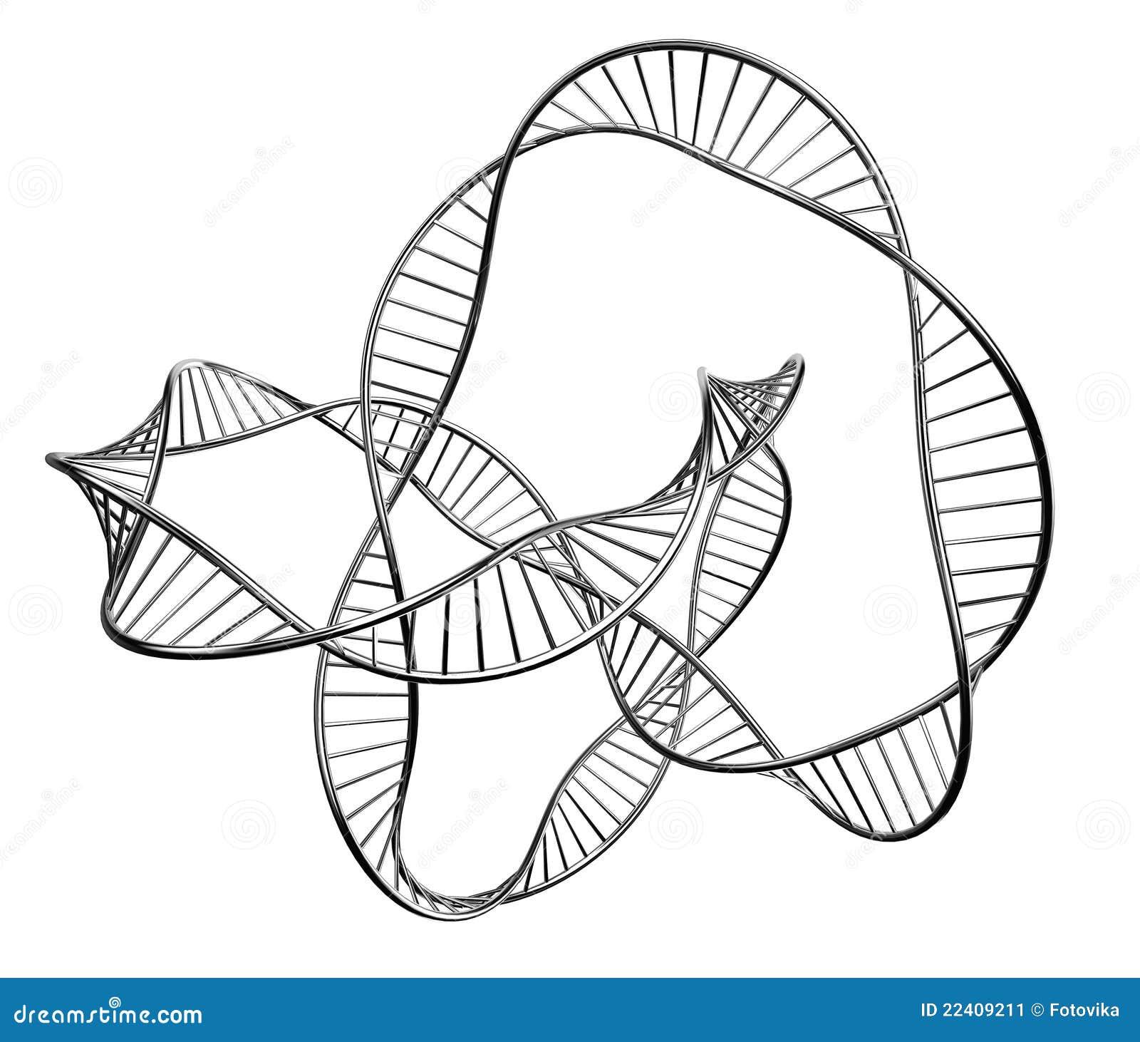 Illustration d une ADN