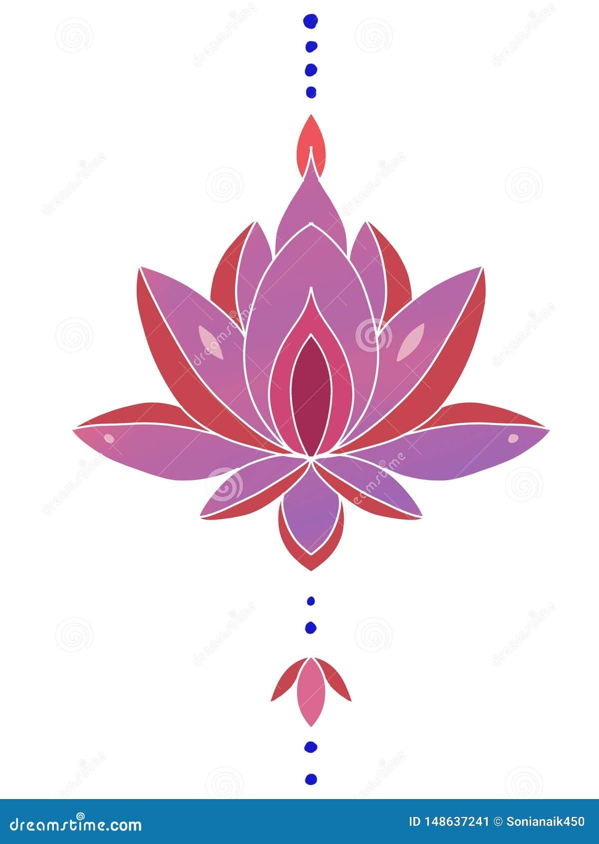 Illustration de Lotus sur un fond blanc