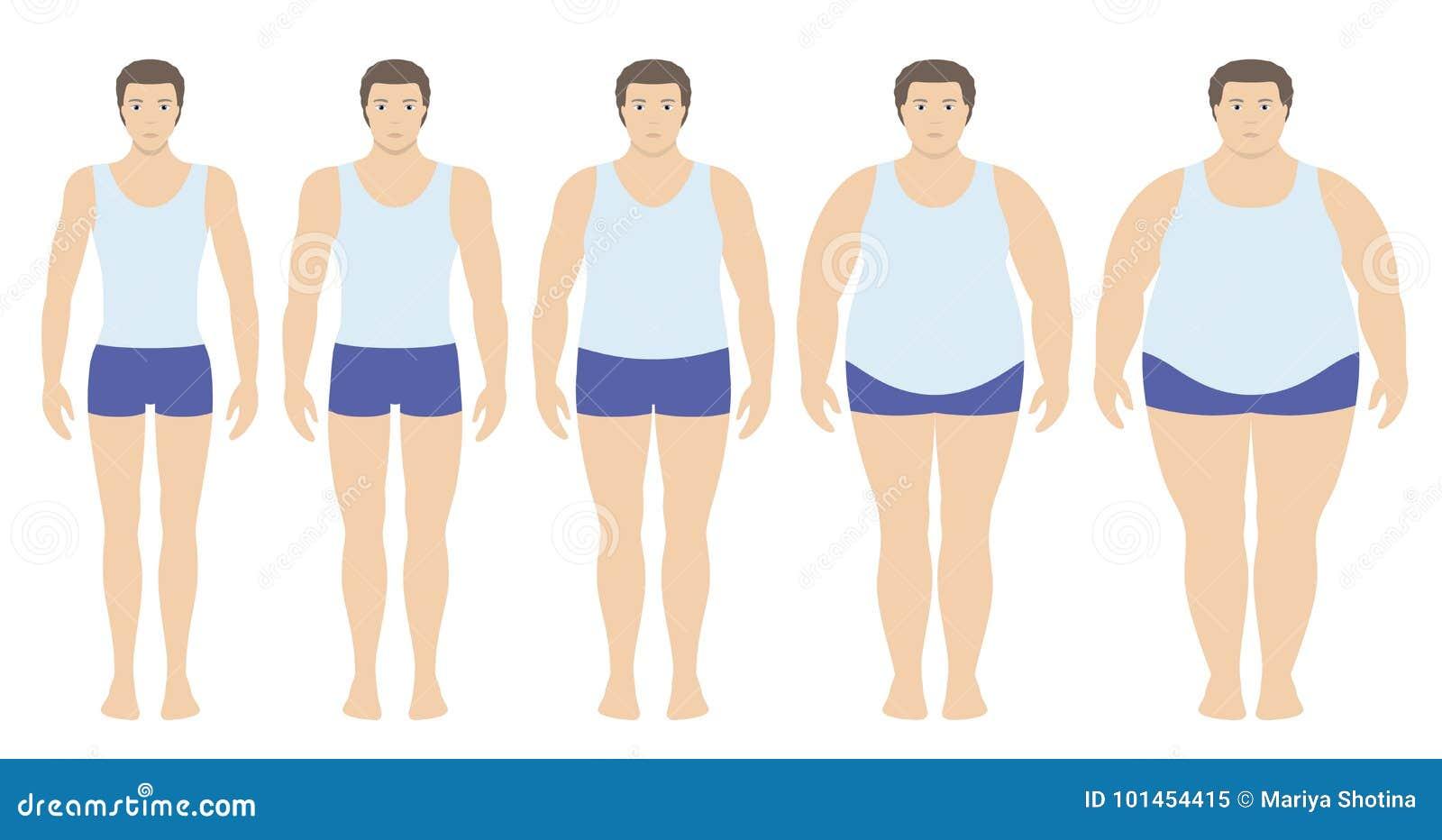 Illustration de vecteur d indice de masse corporelle du poids insuffisant extrêmement à obèse dans le style plat Homme avec diffé
