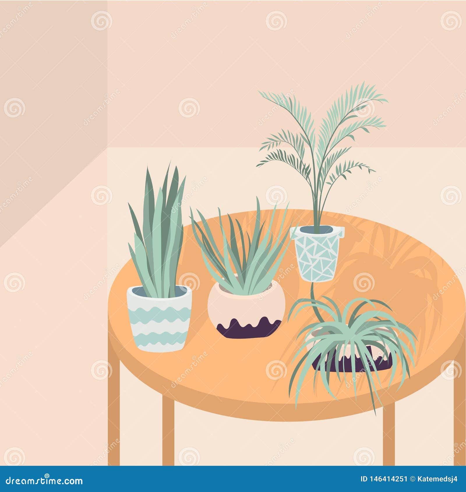 Illustration De Vecteur Des Plantes D Int Rieur Sur La Table