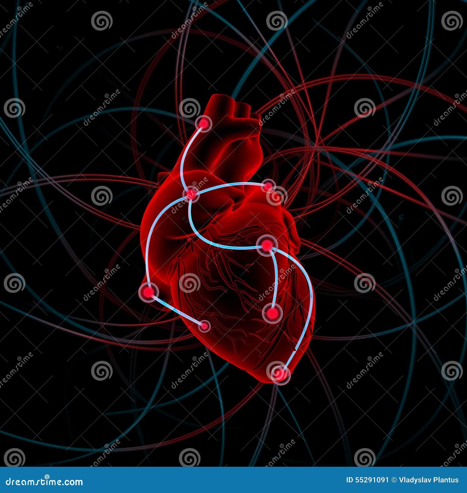 Illustration des Herzens mit Antrieben