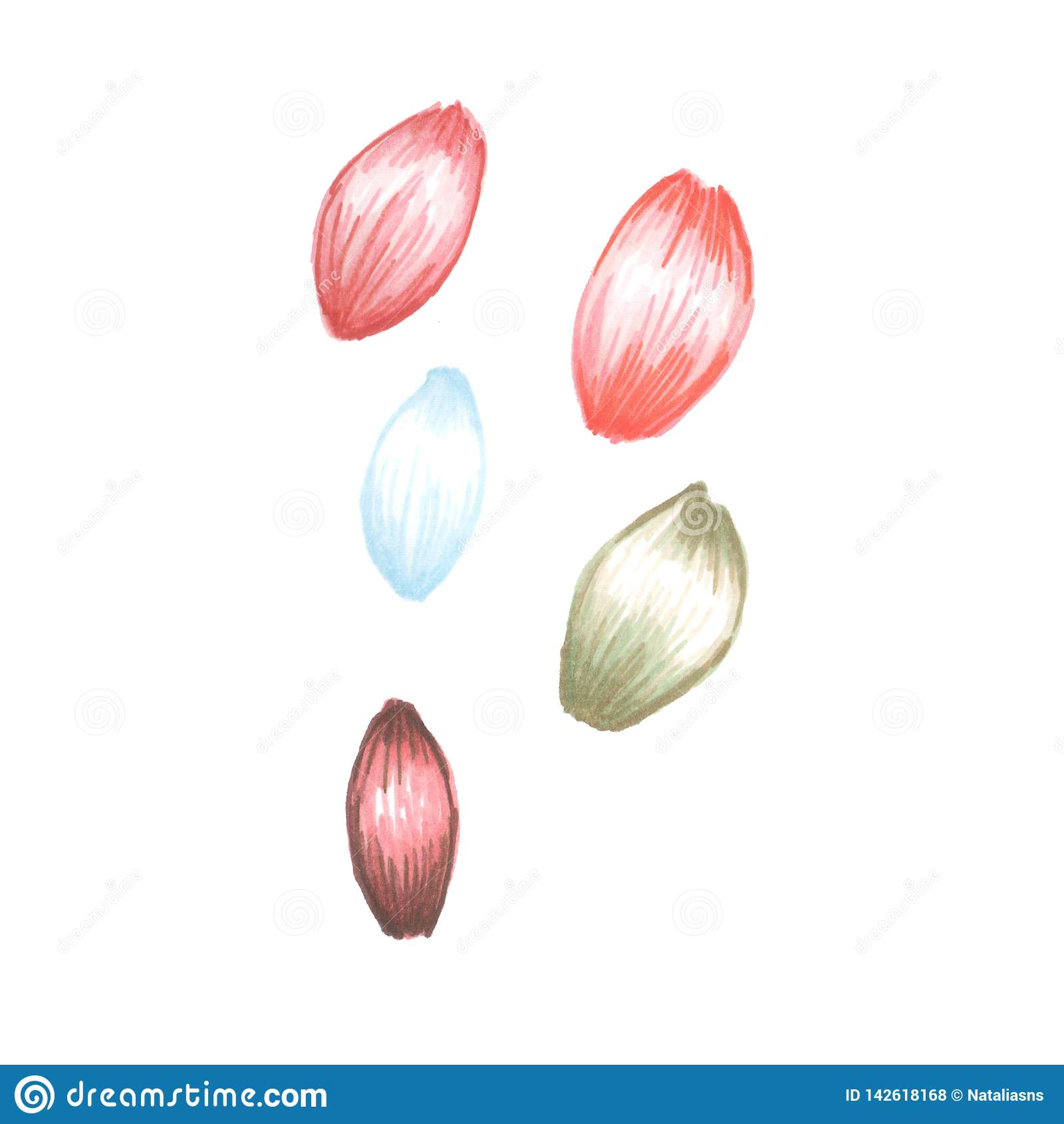 Illustration des pétales de fleur