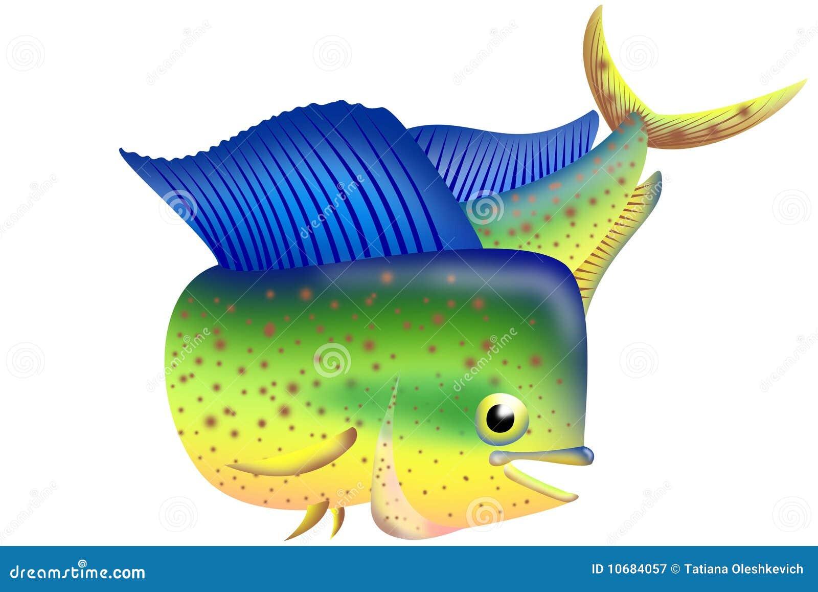 Illustration Of Dorado Fish Royalty Free Stock Photography - Image: 10684057