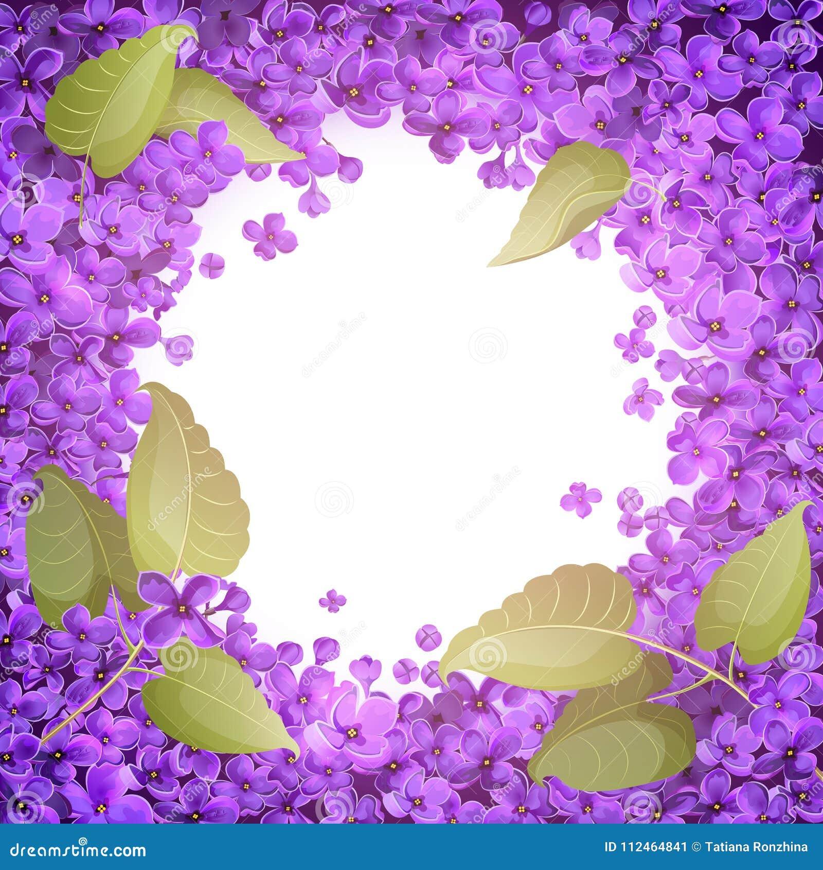 Illustration eines runden Rahmens der Blumen und der Blätter von Flieder