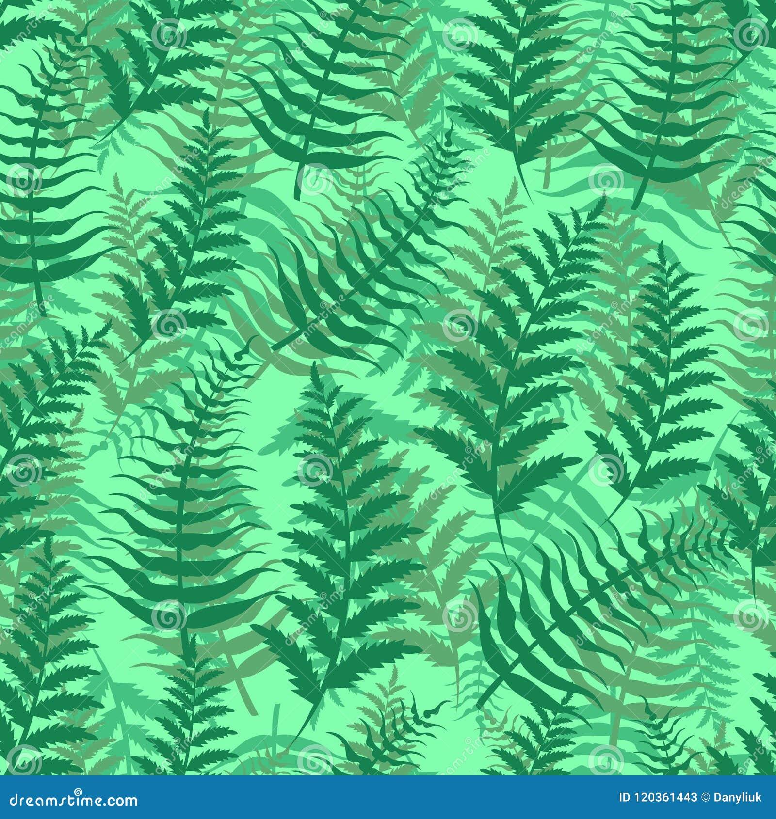 Illustration exotique de vecteur d usine de feuille de vert de nature de fond de modèle sans couture de fougère