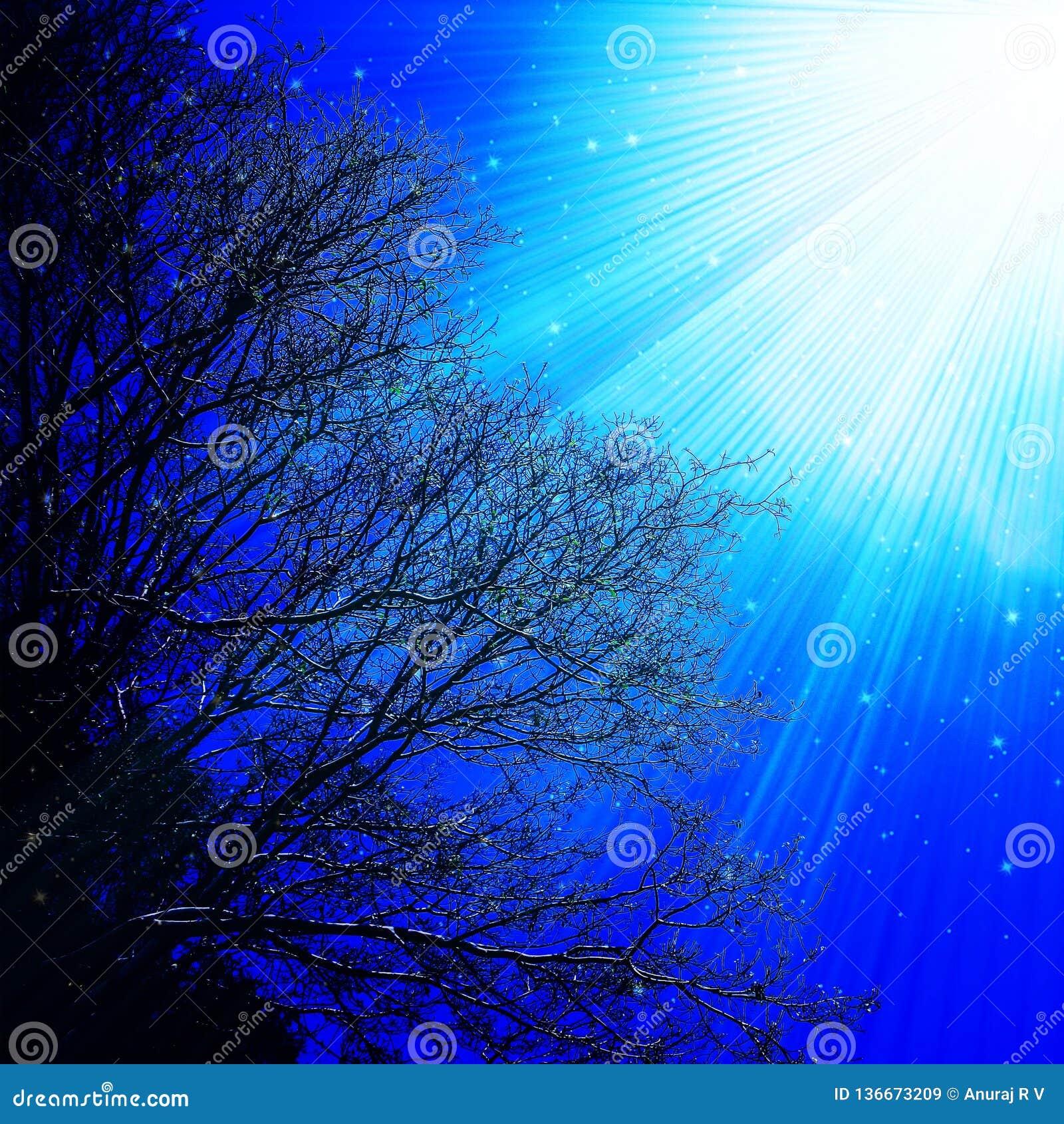 Illustration för ljusa strålar för himmelträdfilialer