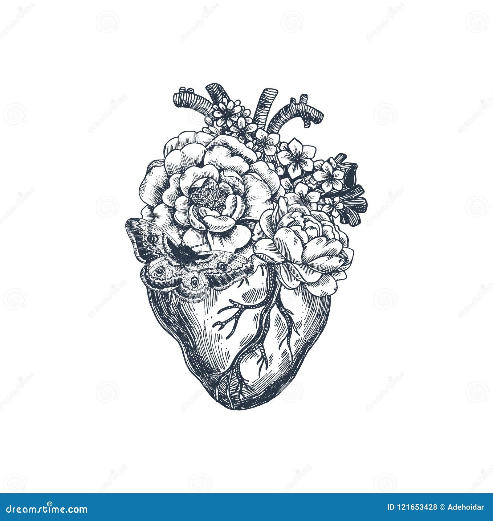Illustration för tatueringanatomitappning Blom- anatomisk hjärta också vektor för coreldrawillustration
