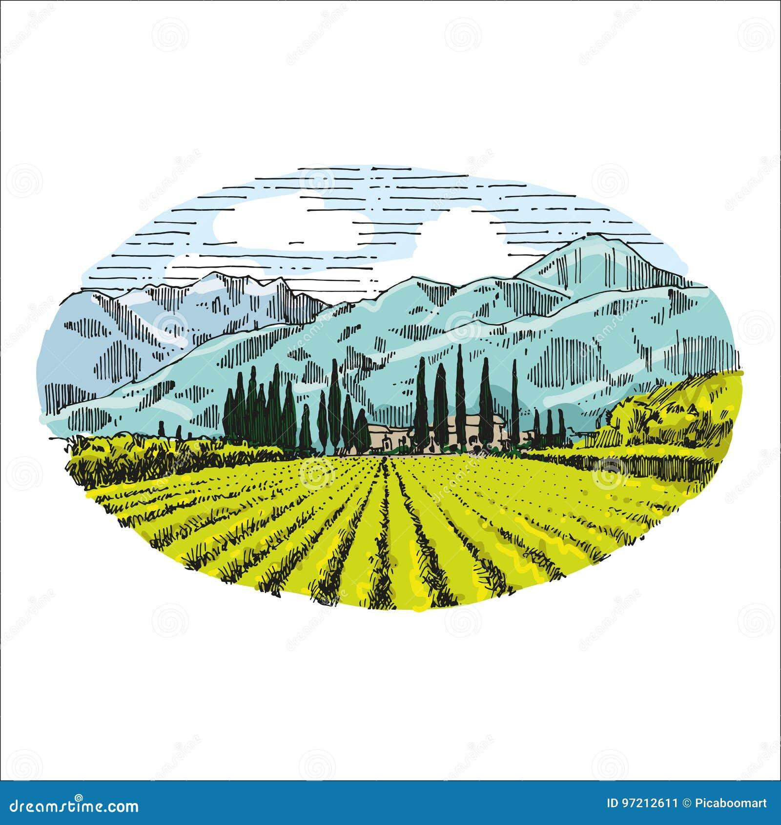 Illustration för teckning för hand för vingårdtappning retro