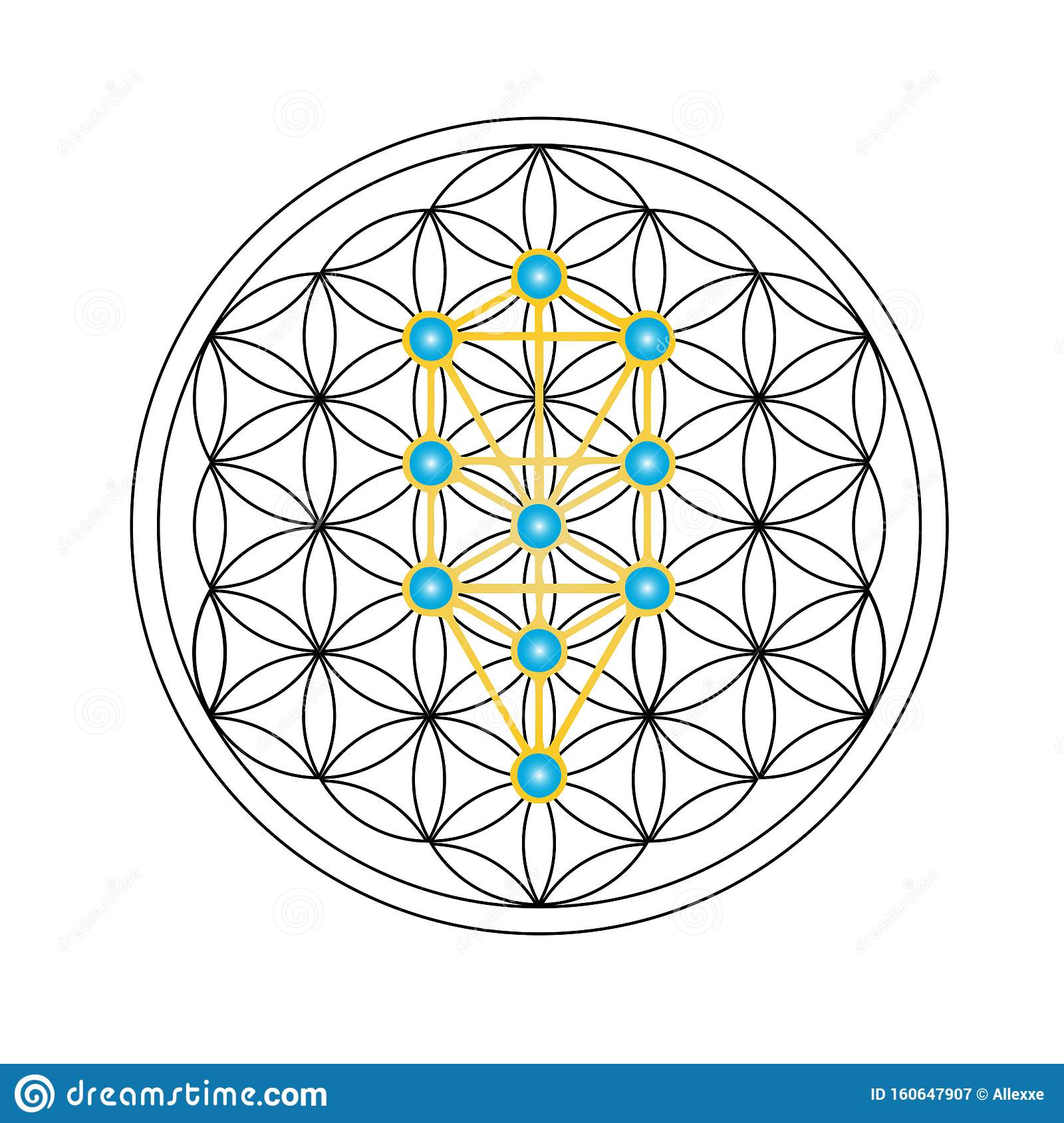 Flower Of Life With Kabbalah Tree Of Life Judaism Stock Vector Illustration Of Repeating Geometry 160647907 It is also a representation of how god the tree has always been a symbol of life, renewal, and energy. https www dreamstime com illustration flower life symbol isolated white background sacred geometry kabbalah tree life flower life image160647907