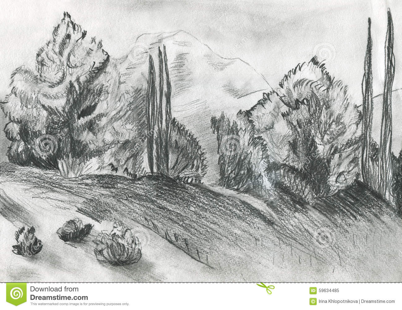The Illustration Of A Forest Stock Illustration - Image ...