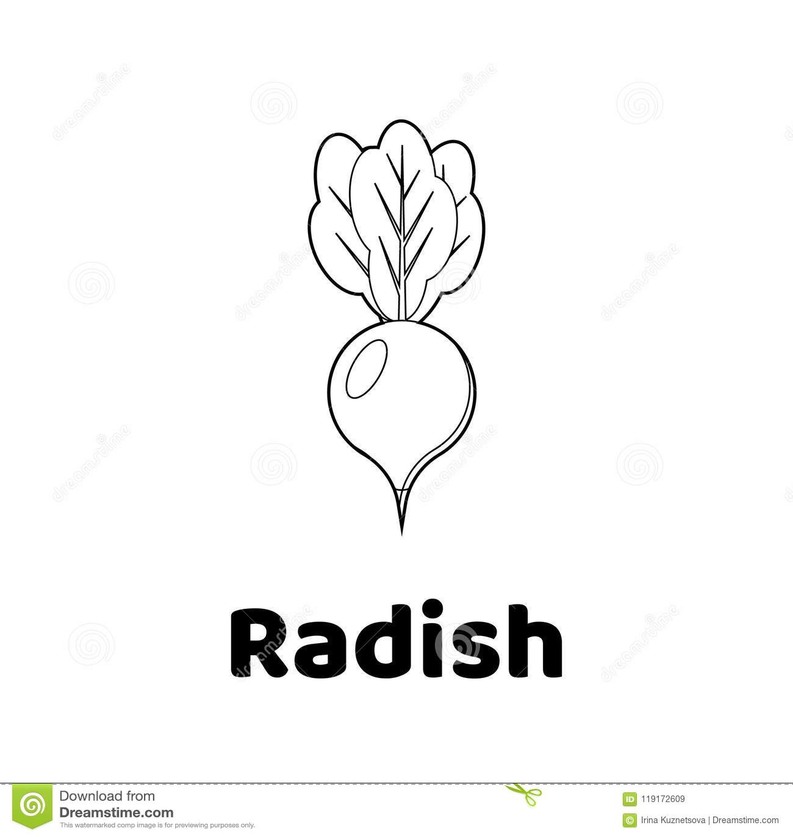 Illustration. Game For Children. Vegetable. Coloring Page Radish ...