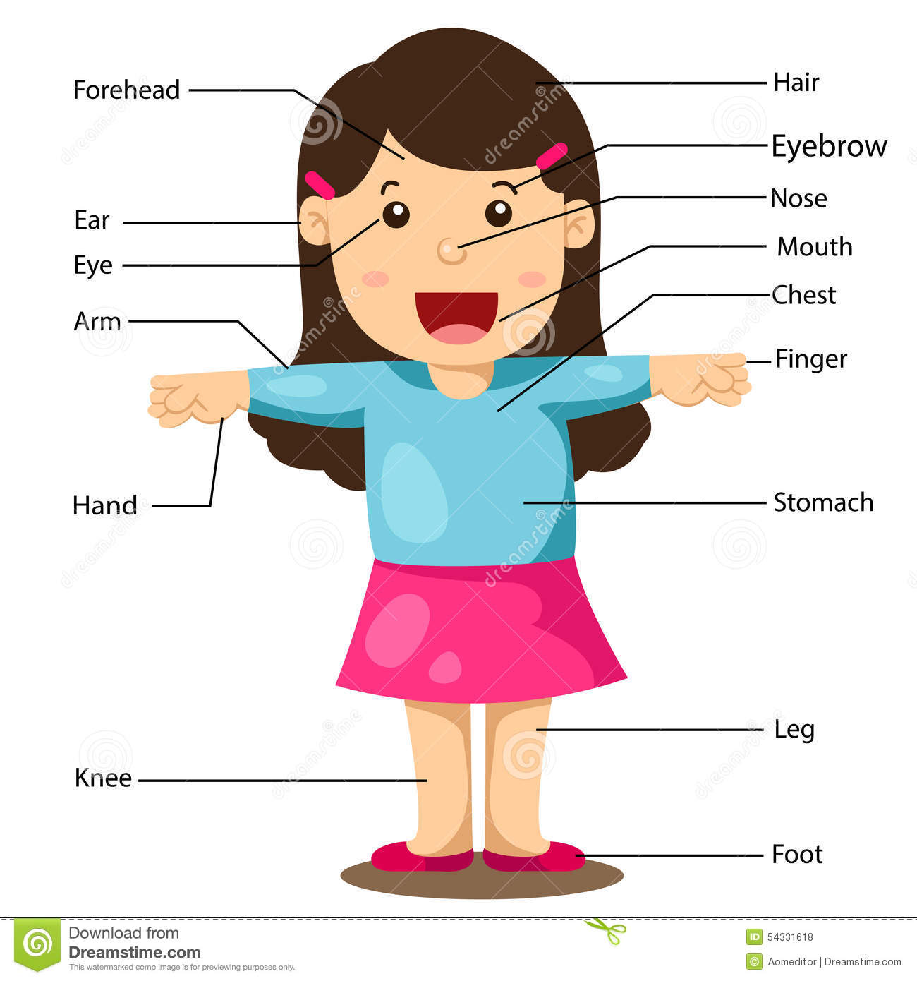 Illustration Of Girl With Labeled Body Parts Stock Vector
