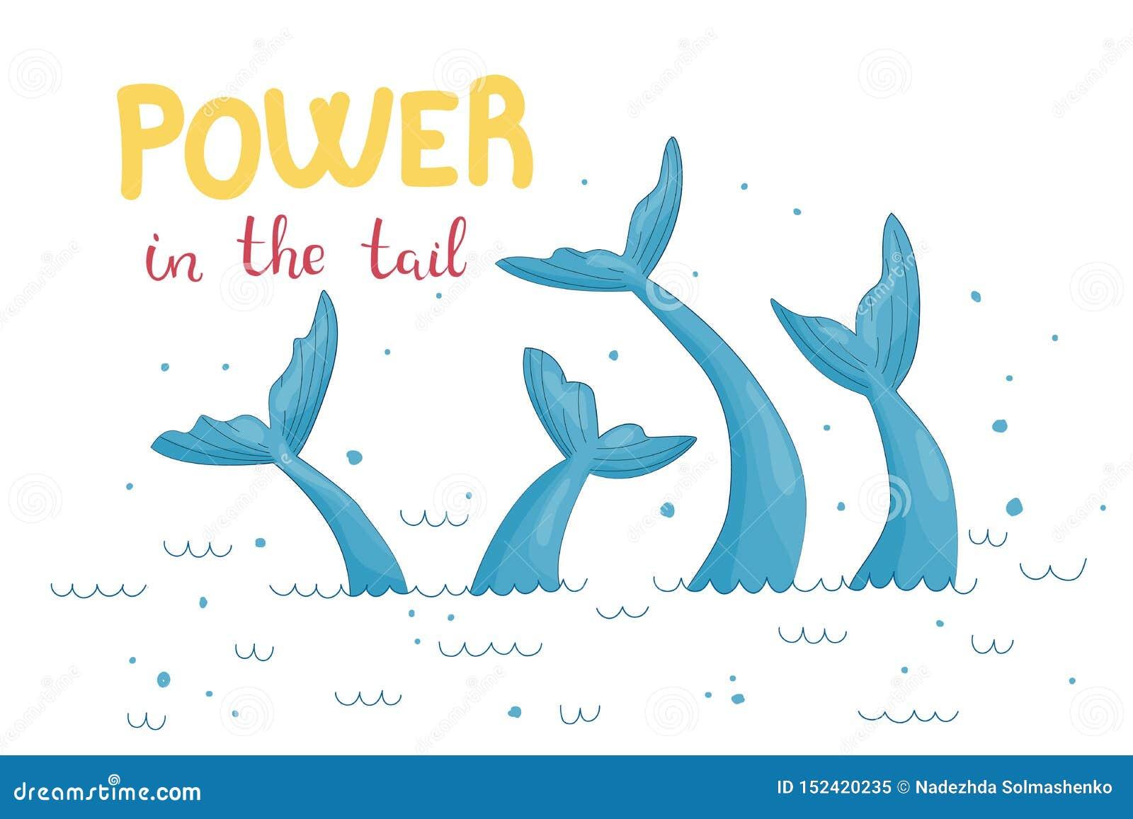 Illustration graphique de queue de sirène