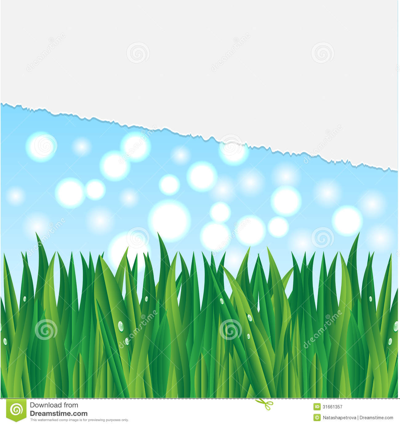 Illustration Of Grass Royalty Free Stock Photography ...