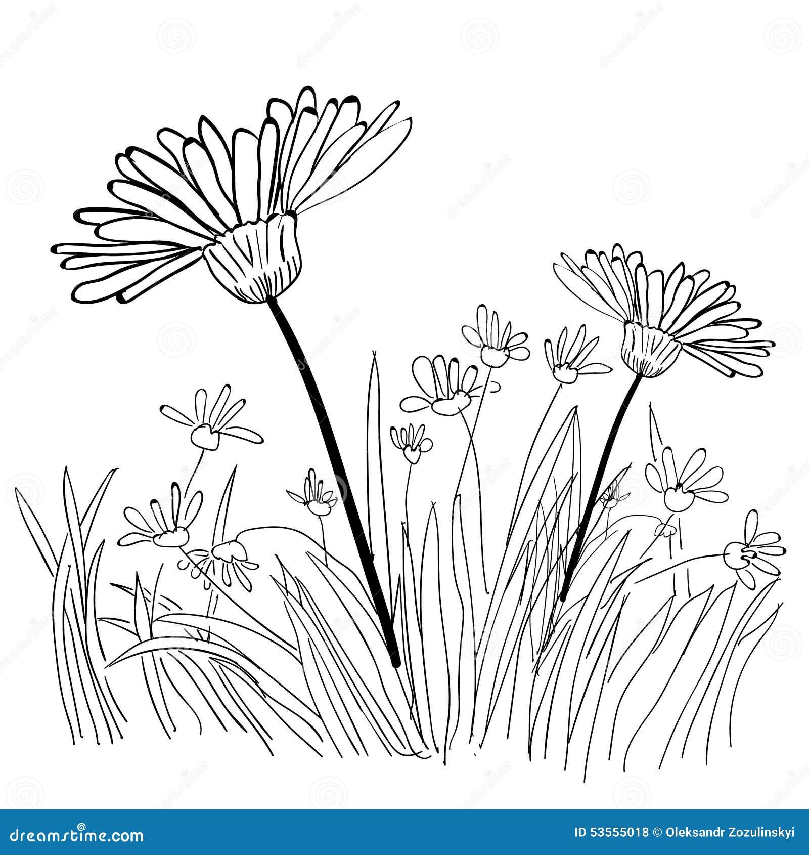Grass Outline Vector Illustration Of Grass ...