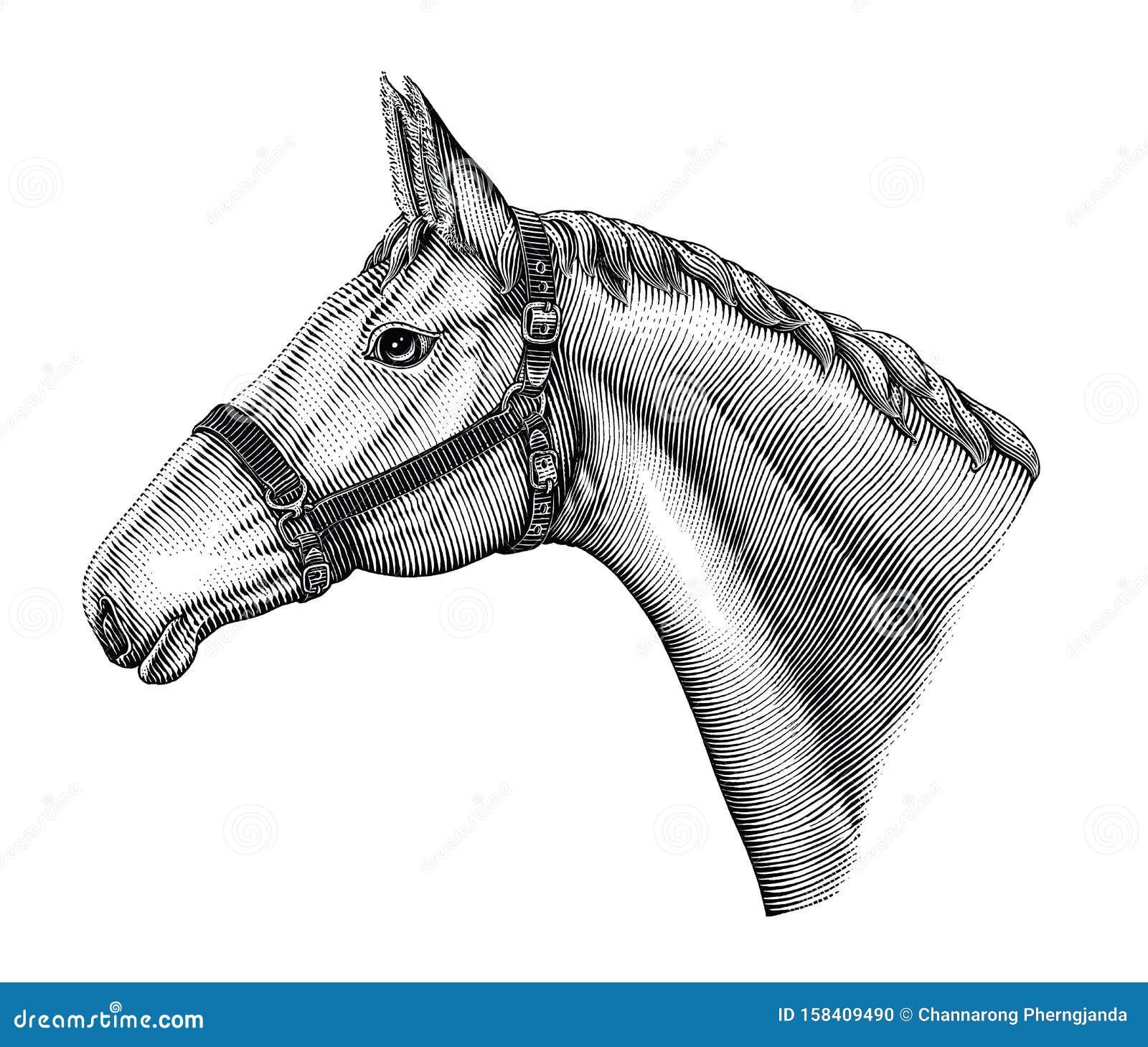 Horse Art Stock Illustrations 62 601 Horse Art Stock Illustrations Vectors Clipart Dreamstime