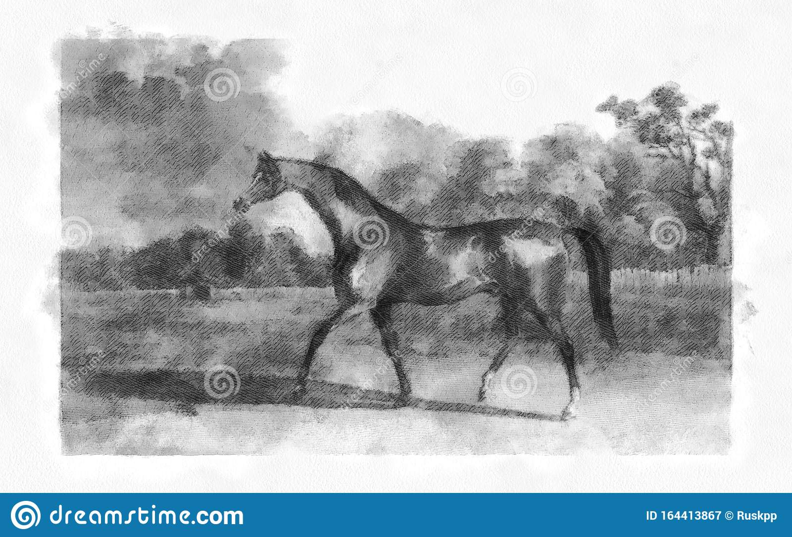 Illustration Of Horses Engraving Stock Illustration Illustration Of Engraving Race 164413867