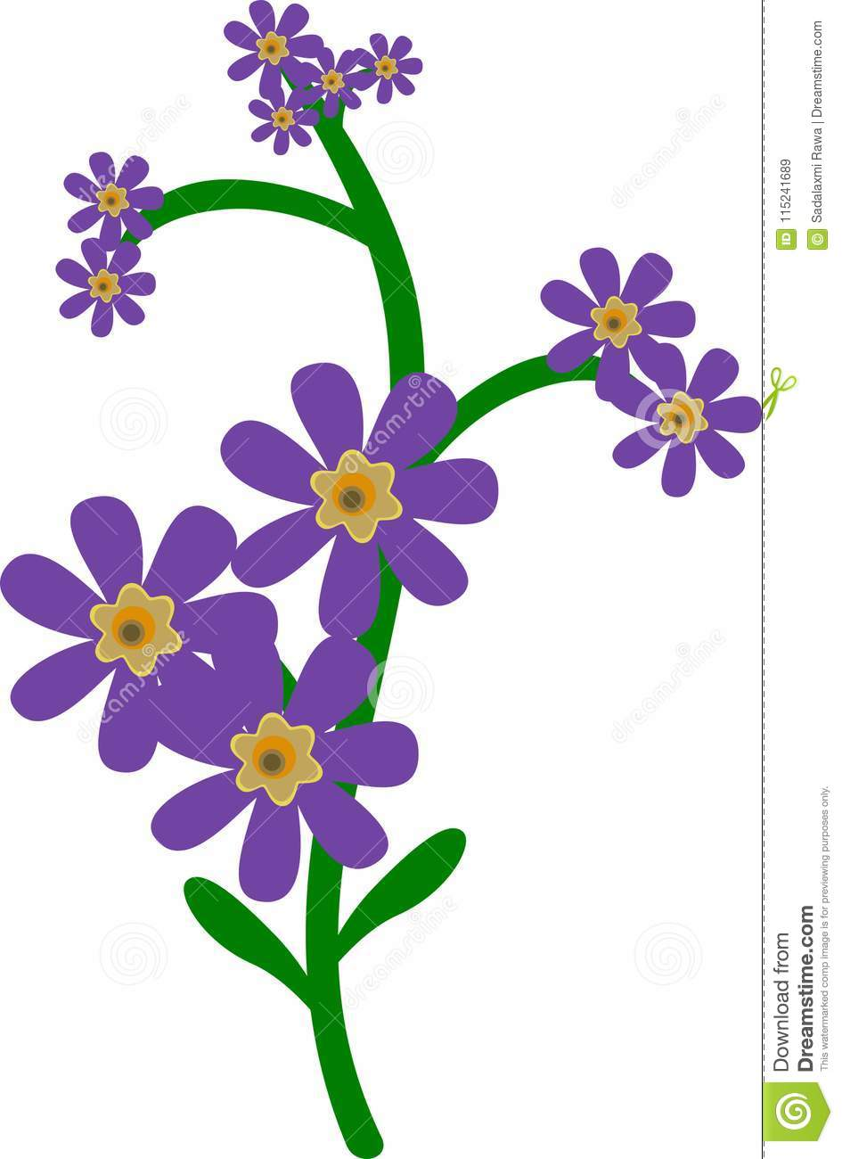 Lavender flower for beauty and cosmetic
