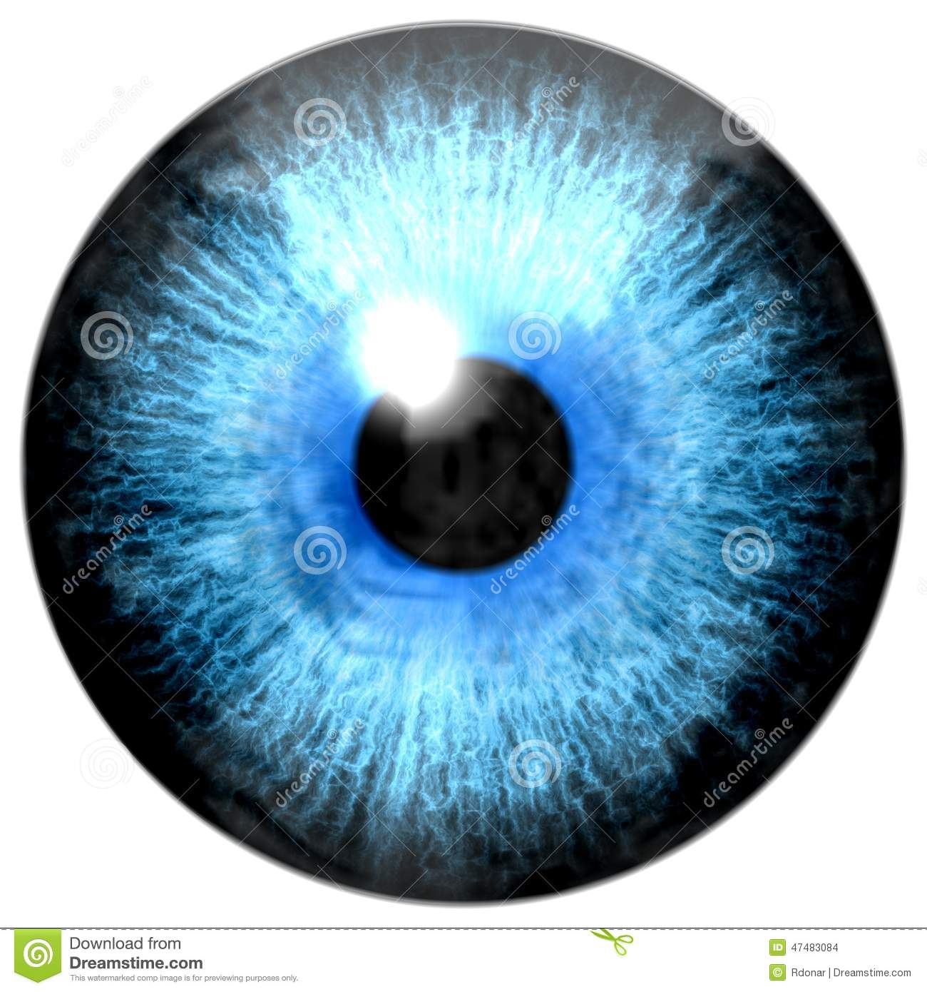 Illustration Of Light Blue Eye Iris Light Reflection
