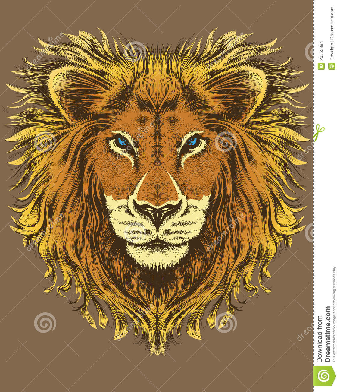 Illustration Of A Lion Stock Images - Image: 20555884
